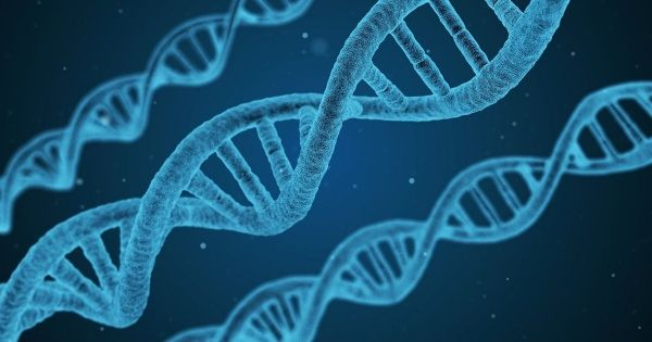 DNA Testing in Contentious Probate Claims