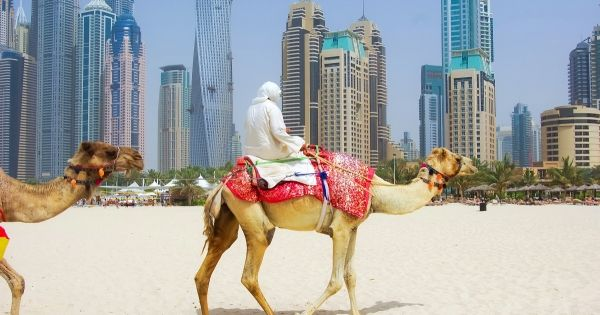 The Response to Covid-19: The United Arab Emirates Case